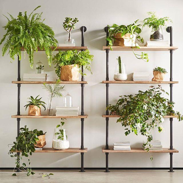 Inredning växtvägg